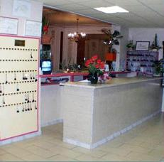 Réception Hôtel Vincenette Lourdes