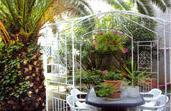 Jardin Hôtel Mimont Cannes