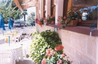 Terrasse Hôtel Restaurant Le Tamaris Port Saint Louis